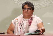 Desde el SAT no habrá terrorismo fiscal: Raquel Buenrostro