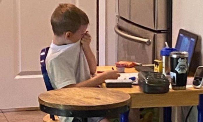 Viral: Niño llora de frustración en su clase virtual